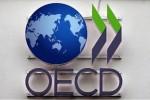 OECD 로고.jpg
